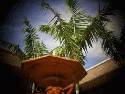 Apogee at Delray Beach - Delray Beach Rental Apartments