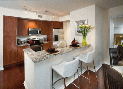apartment for rent in fort lauderdale 1 bedroom